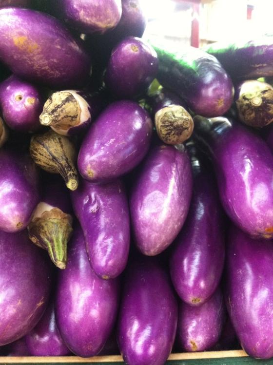 Des aubergines violettes, je craque ! (c) Coco Jobard