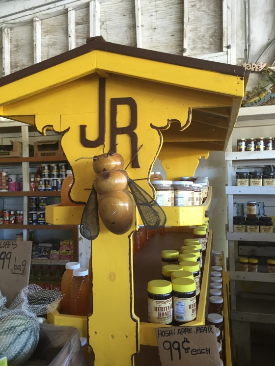 (c) coco jobard